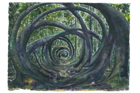 Medicine Wheel Secret Garden